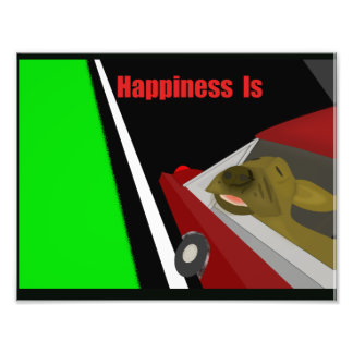 Happiness Is A Dog and Car Art Photo