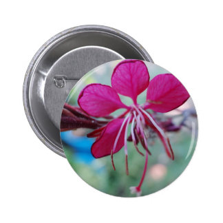 Happiness Is A Gift Pinback Button