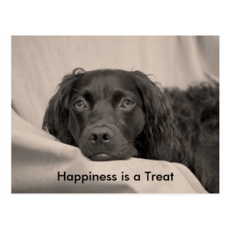 Happiness is a Treat Postcard