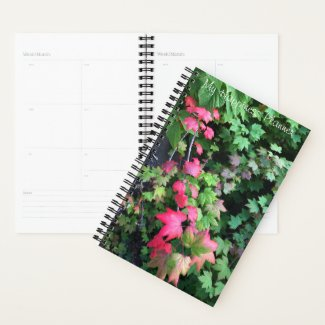 Happiness Journal / Pink leaves Planner