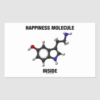 Happiness Molecule Inside (Serotonin Molecule) Rectangular Sticker
