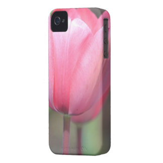 Happiness Tulips Case-Mate iPhone 4 Case
