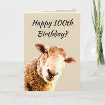 Happy  100th Birthday Funny Sheep Animal Humor Card