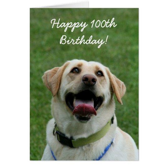 Happy 100th Birthday Labrador Greeting Card Zazzle