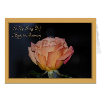 Happy 1st Anniversary Wife Card