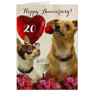 Happy 20th Anniversary chihuahua dogs card