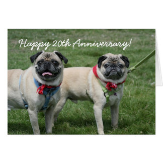 Happy 20th Anniversary pug greeting card