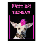 Happy 21st Birthday Chihuahua Punk greeting card
