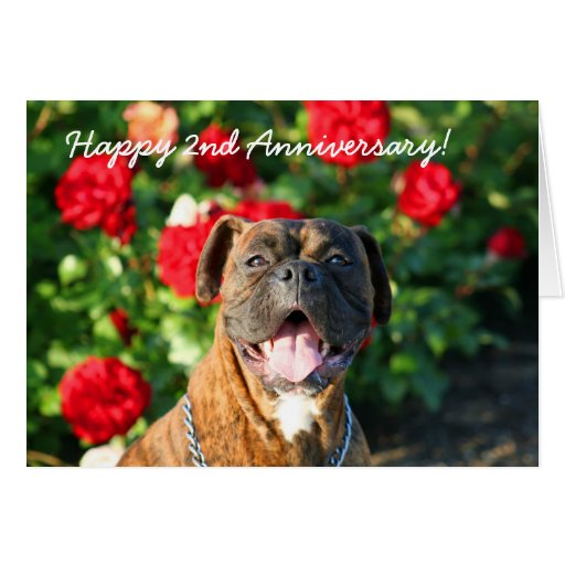Happy nd anniversary boxer dog greeting card zazzle
