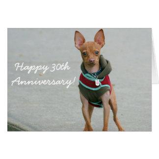 Happy 30th Anniversary chihuahua greeting card