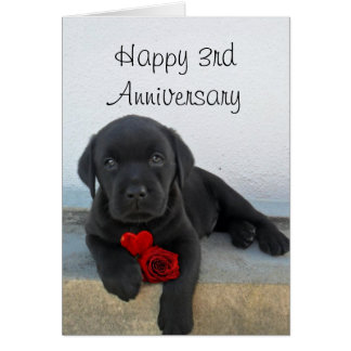 Happy 3rd Anniversary Labrador puppy greeting card