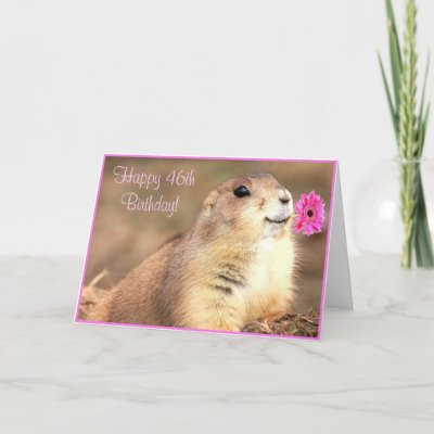 Happy Birthday 46th. Happy 46th Birthday Prairie