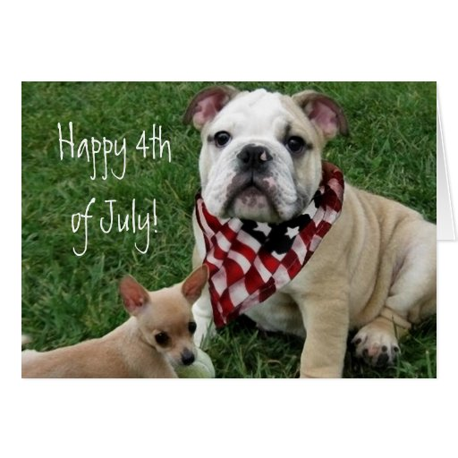 Happy 4th of July Bulldog card