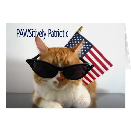Happy 4th of July - PAWSitively Patriotic Cat Greeting Card