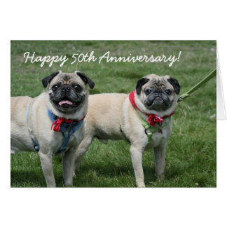 Happy 50th Anniversary pug greeting card