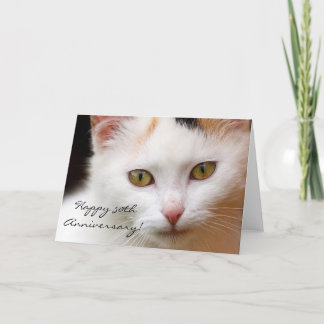 Happy 50th Anniversary White cat greeting card