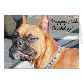 Happy 50th Birthday Boxer Dog greeting card