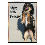 Happy 65th birthday Chihuahua greeting card