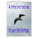 Happy 66th Birthday Flying Seagull bird Greeting Card