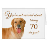 Happy 70th birthday, worried lab greeting card