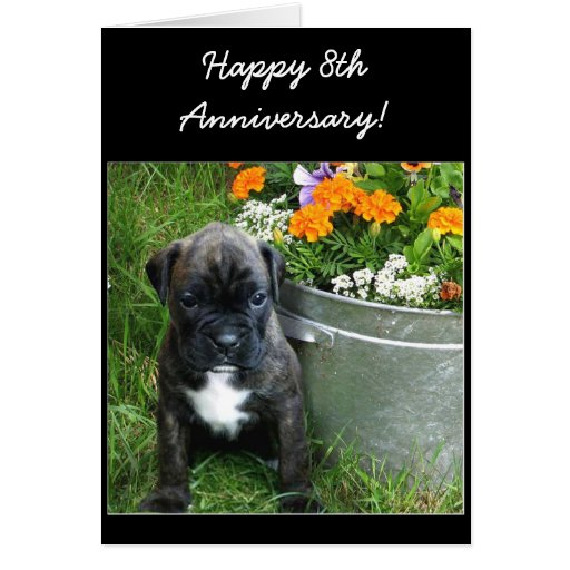 Happy th anniversary boxer puppy greeting card zazzle
