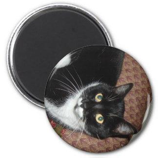 Happy Adopted Cat Fridge Magnet