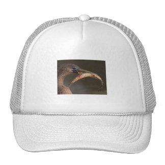 Happy Anhinga Trucker Hat