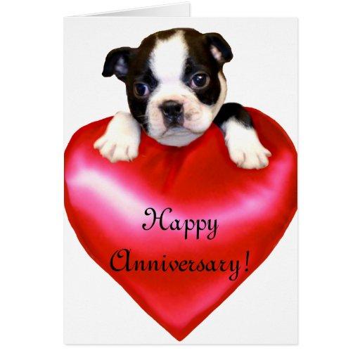 Happy Anniversary Boston Terrier Greeting Card