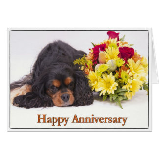 Happy Anniversary Cavalier King Charles Spaniel Card