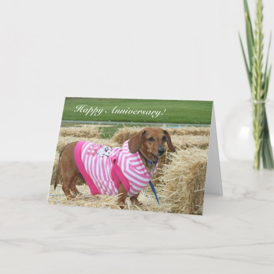 Happy anniversary dachshund greeting card zazzle happy anniversary dachshund greeting card m4hsunfo