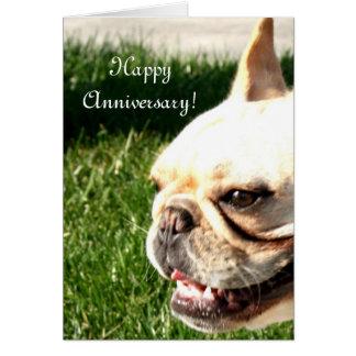 Happy Anniversary French Bulldog greeting card