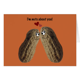"Happy Anniversary! ""I'm nuts about you!"" Card"