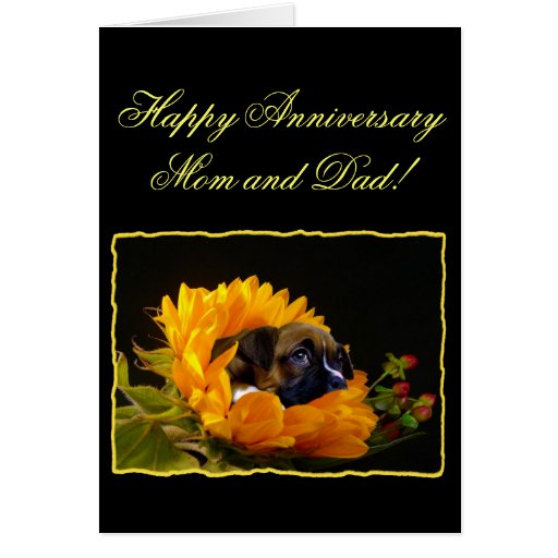 Happy anniversary mom and dad boxer greeting card zazzle