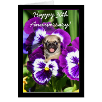 Happy Anniversary Pug in pansies card