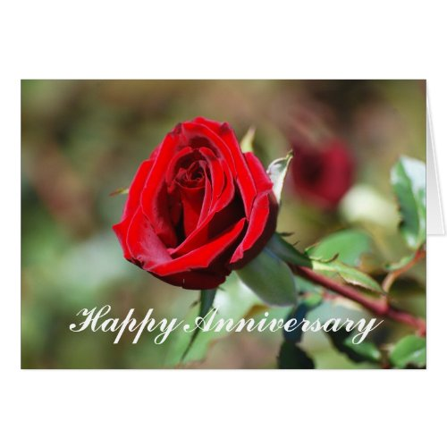 Happy Anniversary Romantic Red Rose Card