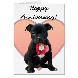 Happy Anniversary staffordshire bull terrier card