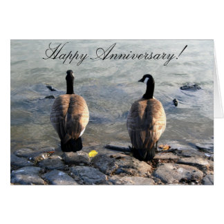 Happy Anniversary Two Canadian Geese greeting card