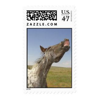 Happy Appy Postage