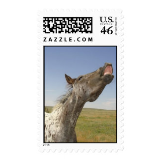 Happy Appy Postage Stamps