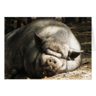 Happy As A Pig Greeting Card