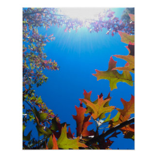 Happy Autumn Print
