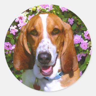 Happy Basset Hound Classic Round Sticker