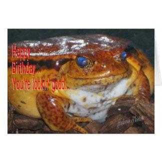 Happy Bday Frog-Lookin Good Cards