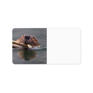 Happy Beaver Label