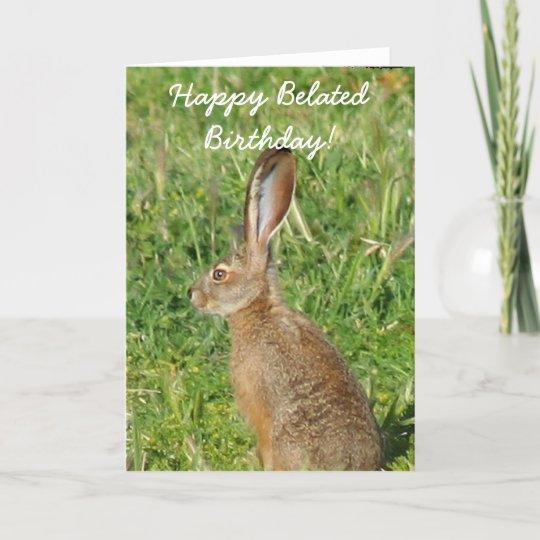 Happy Belated Birthday Jack Rabbit Greeting Card Zazzle