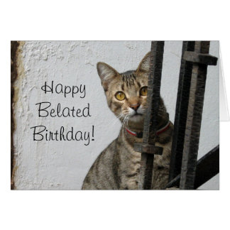 Happy Belated birthday tabby cat greeting card