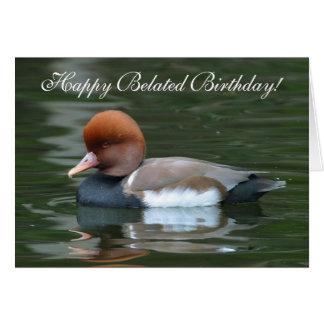 Happy Belated Birthday Wild Duck Greeting Card