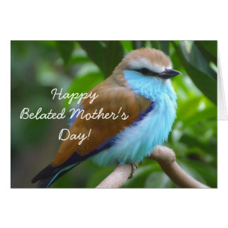 Happy Belated Mother's Day Beautiful bird card