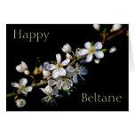 Happy Beltane (spring blossom) Card
