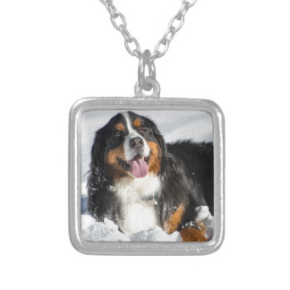 Happy Bernese Mountain Dog In Winter Snow Silver Plated Necklace